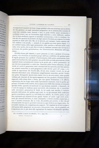 Image of Darwin-F920-1876-417