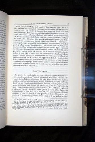 Image of Darwin-F920-1876-419
