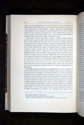 Image of Darwin-F920-1876-420