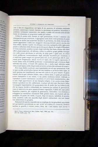 Image of Darwin-F920-1876-423