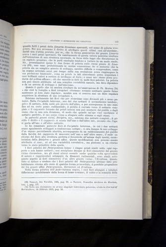Image of Darwin-F920-1876-425