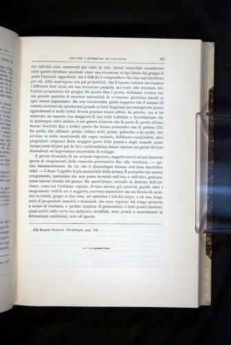 Image of Darwin-F920-1876-427