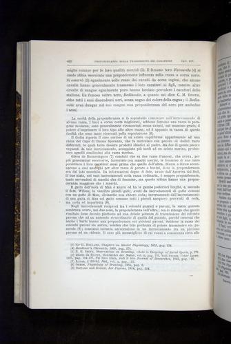 Image of Darwin-F920-1876-432