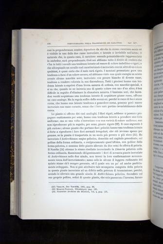 Image of Darwin-F920-1876-436