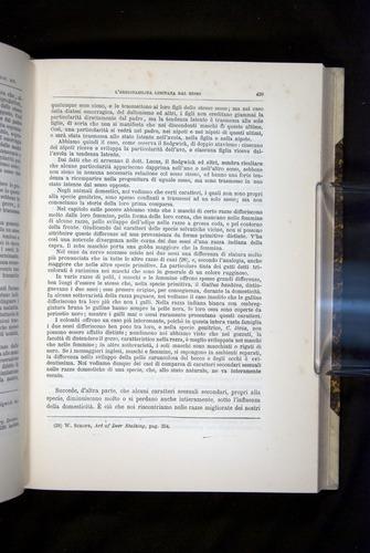 Image of Darwin-F920-1876-439