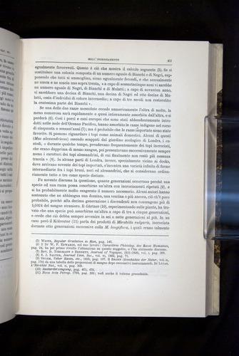 Image of Darwin-F920-1876-451
