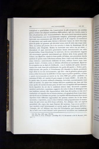 Image of Darwin-F920-1876-452