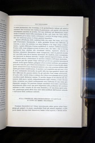 Image of Darwin-F920-1876-453