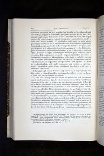 Image of Darwin-F920-1876-454