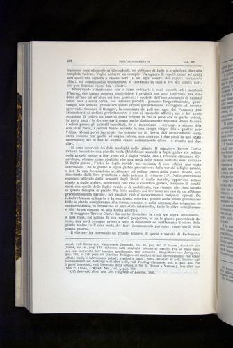 Image of Darwin-F920-1876-456