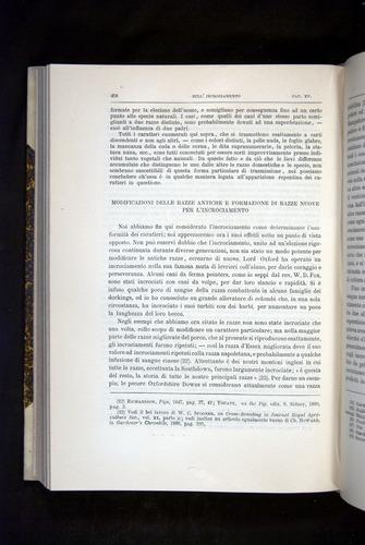 Image of Darwin-F920-1876-458