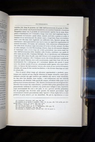 Image of Darwin-F920-1876-459