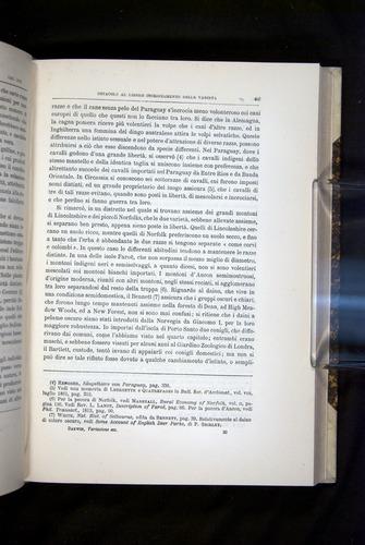 Image of Darwin-F920-1876-465