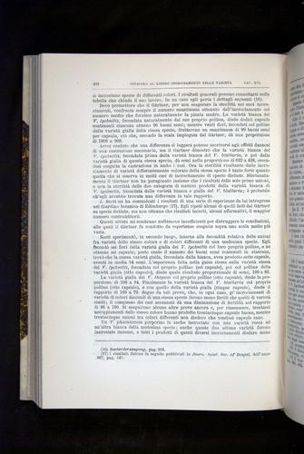 Image of Darwin-F920-1876-468
