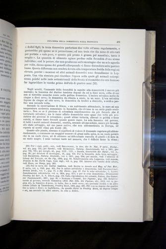 Image of Darwin-F920-1876-473