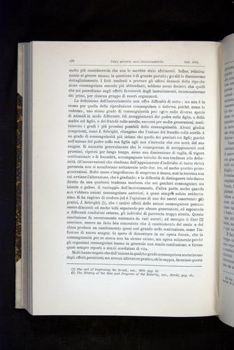 Image of Darwin-F920-1876-476