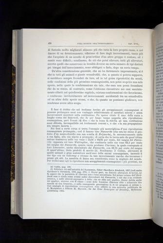 Image of Darwin-F920-1876-478