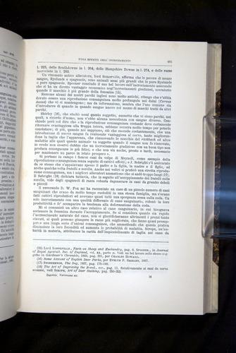 Image of Darwin-F920-1876-481