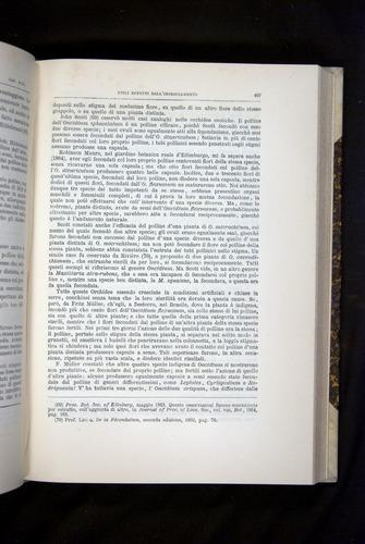 Image of Darwin-F920-1876-493