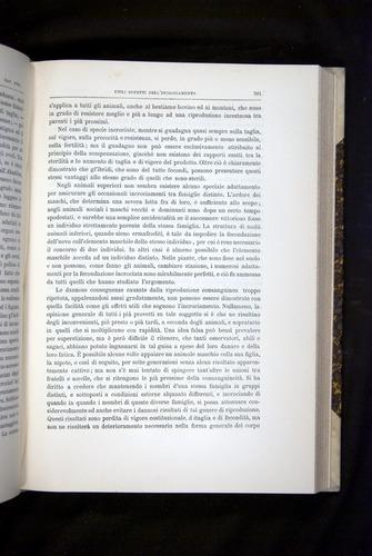 Image of Darwin-F920-1876-501
