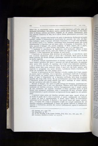 Image of Darwin-F920-1876-508