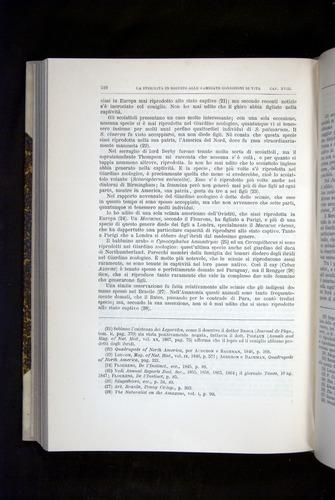 Image of Darwin-F920-1876-510