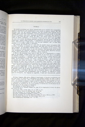 Image of Darwin-F920-1876-511