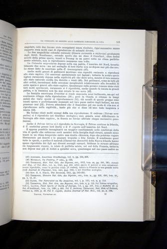 Image of Darwin-F920-1876-513