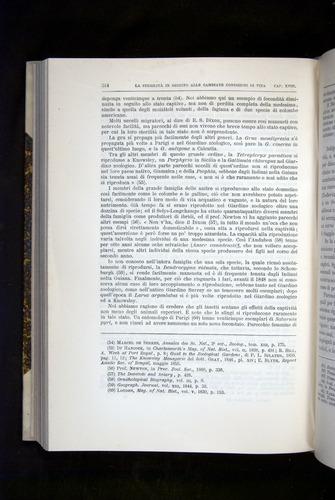 Image of Darwin-F920-1876-514