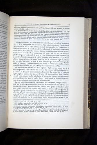 Image of Darwin-F920-1876-515