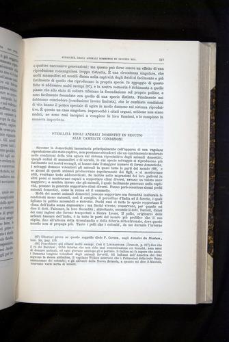 Image of Darwin-F920-1876-517