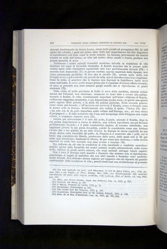 Image of Darwin-F920-1876-518