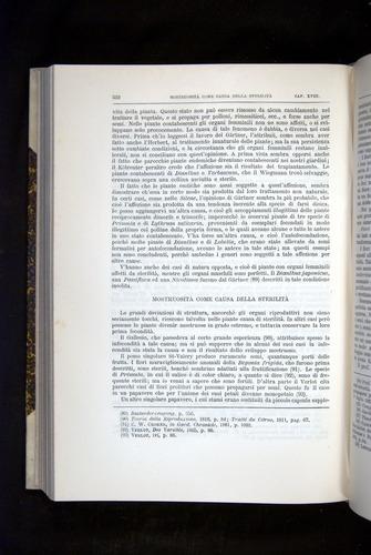 Image of Darwin-F920-1876-522