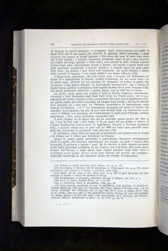 Image of Darwin-F920-1876-526