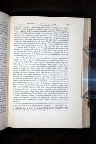 Image of Darwin-F920-1876-535