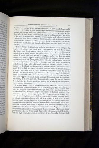Image of Darwin-F920-1876-537