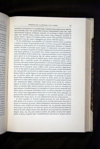 Image of Darwin-F920-1876-539