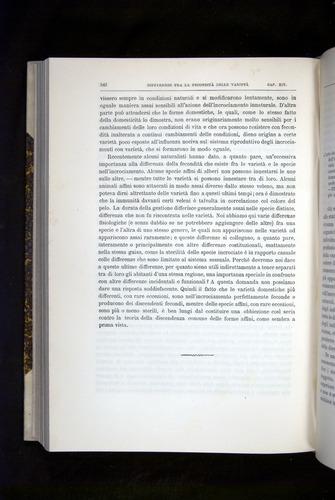 Image of Darwin-F920-1876-542
