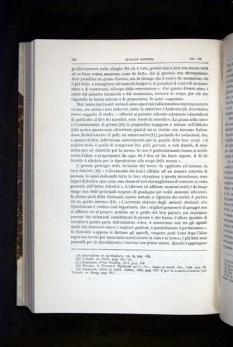 Image of Darwin-F920-1876-546