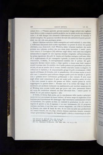 Image of Darwin-F920-1876-548