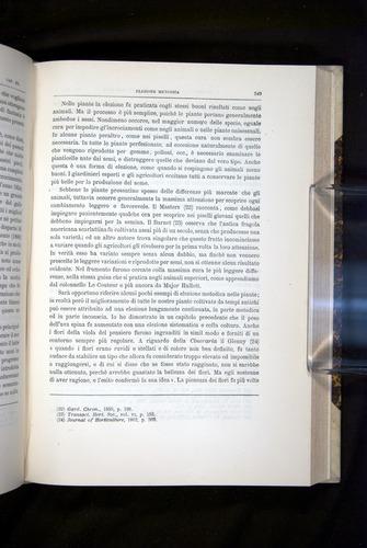 Image of Darwin-F920-1876-549