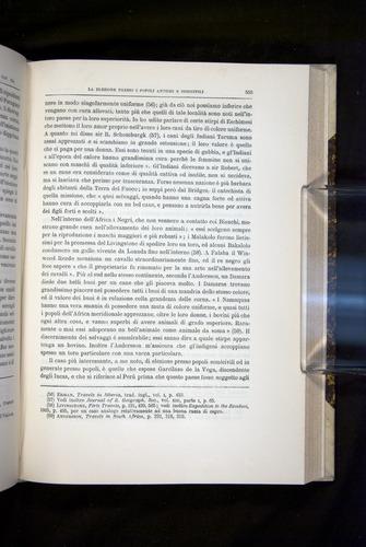 Image of Darwin-F920-1876-555