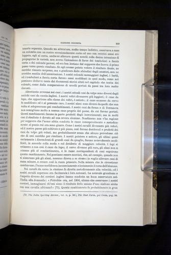 Image of Darwin-F920-1876-559