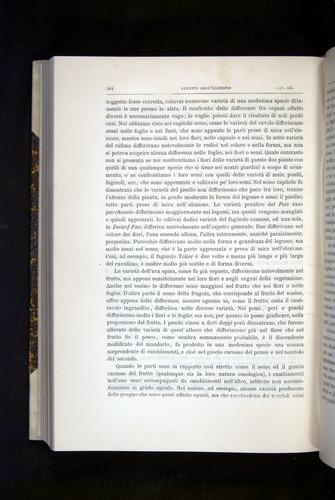Image of Darwin-F920-1876-564