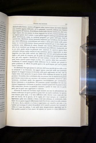 Image of Darwin-F920-1876-565