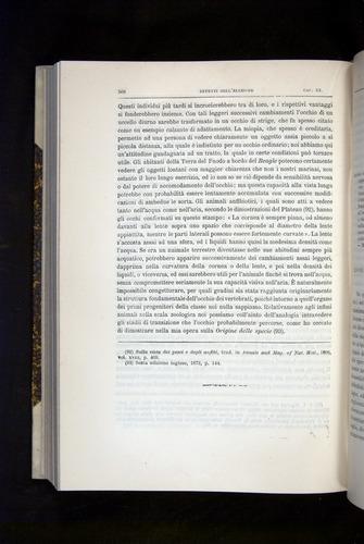 Image of Darwin-F920-1876-568