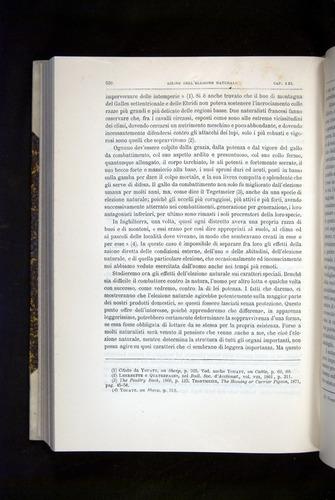 Image of Darwin-F920-1876-570