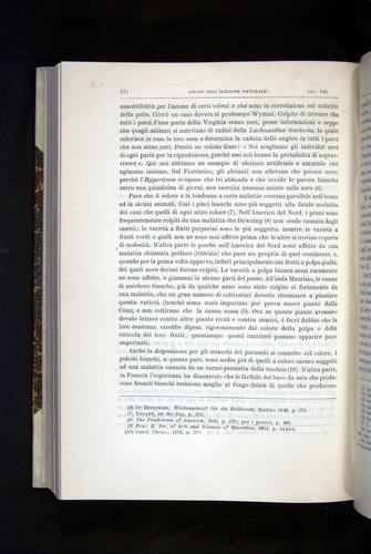 Image of Darwin-F920-1876-572