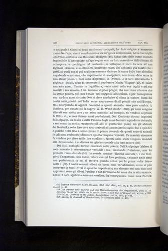 Image of Darwin-F920-1876-580