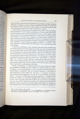 Image of Darwin-F920-1876-581